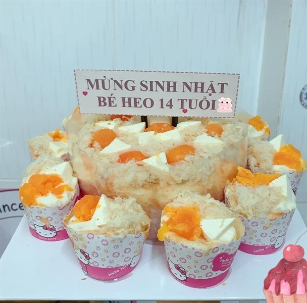 Bánh sinh nhật 20cm + 10 cupcake