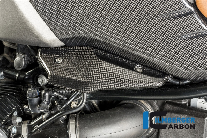 Ilmberger Chụp Phun Injector BMW R9T