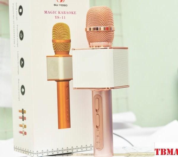 Micro Karaoke YS-11