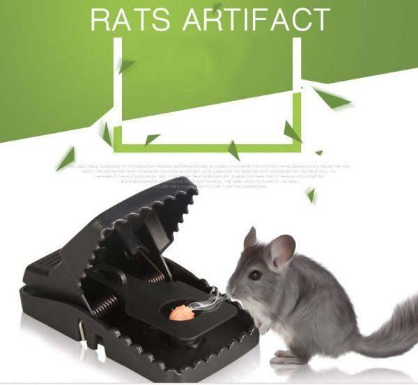 Bẫy chuột tự động