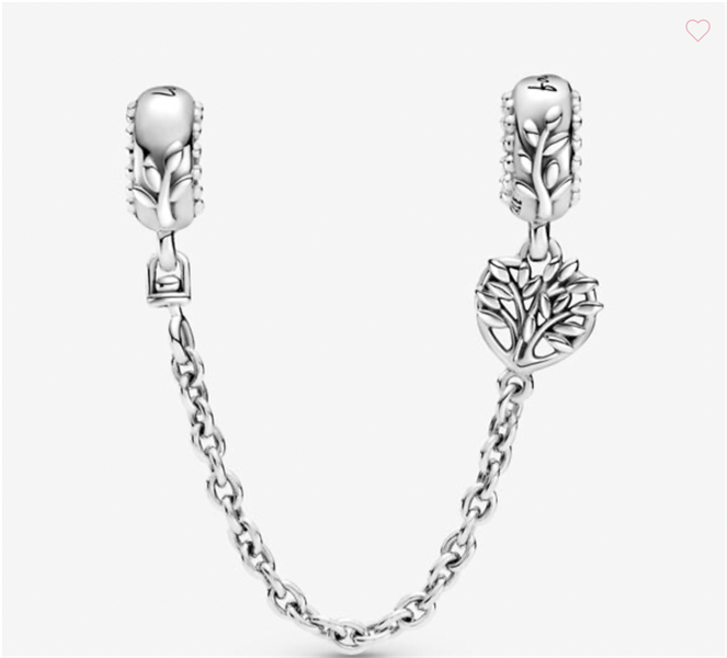 Heart Family Safety Chain Charm